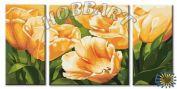 """Картина по номерам """"Тюльпаны для тебя"""""""